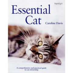 Essential Cat