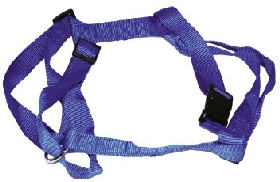 Blue Adjustable Harness