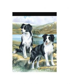 Border Collie Borders, Notepad