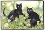 Black Cats Dandelions, Otter House