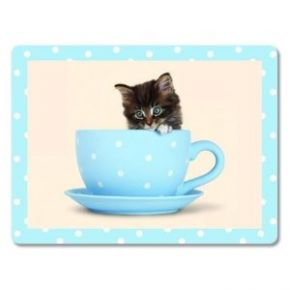 Kitty in a Tea Cup, Glass Worktop
