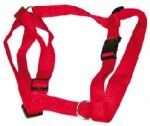 Red, Adjustable Harness