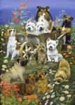 Garden Party, Jigsaw