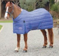 Shires Chillcheeta, Navy Check