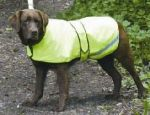 Safety Hi Viz Coat