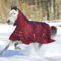 Shires, Stormcheeta Combo, Red