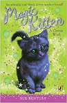 A Circus Wish, Magic Kitten Book